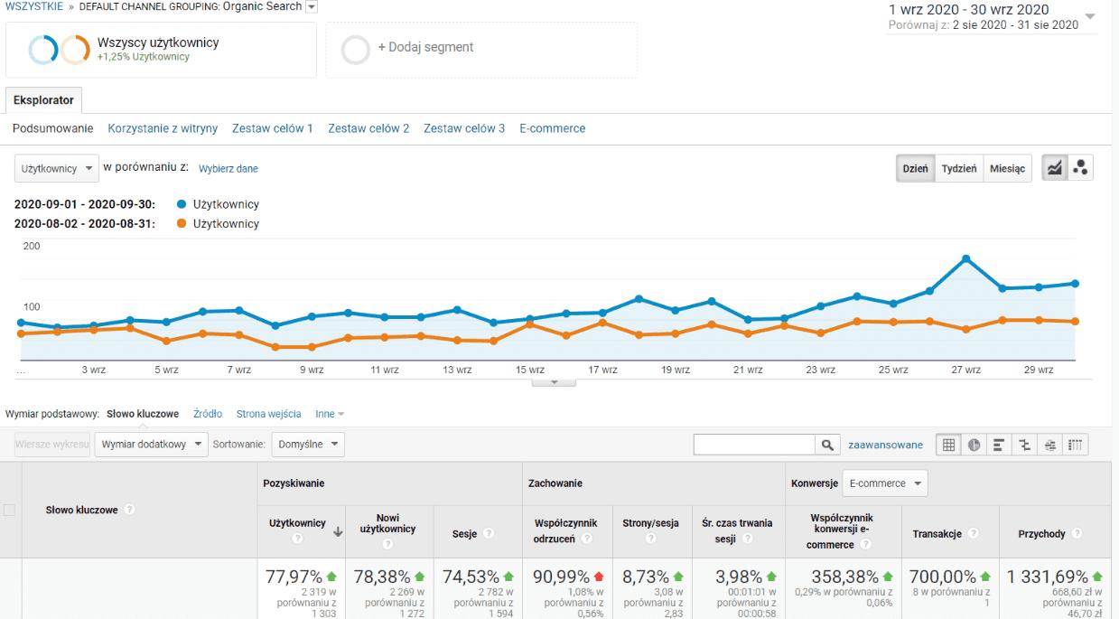 SEO sklepu internetowego po 9 miesiącach